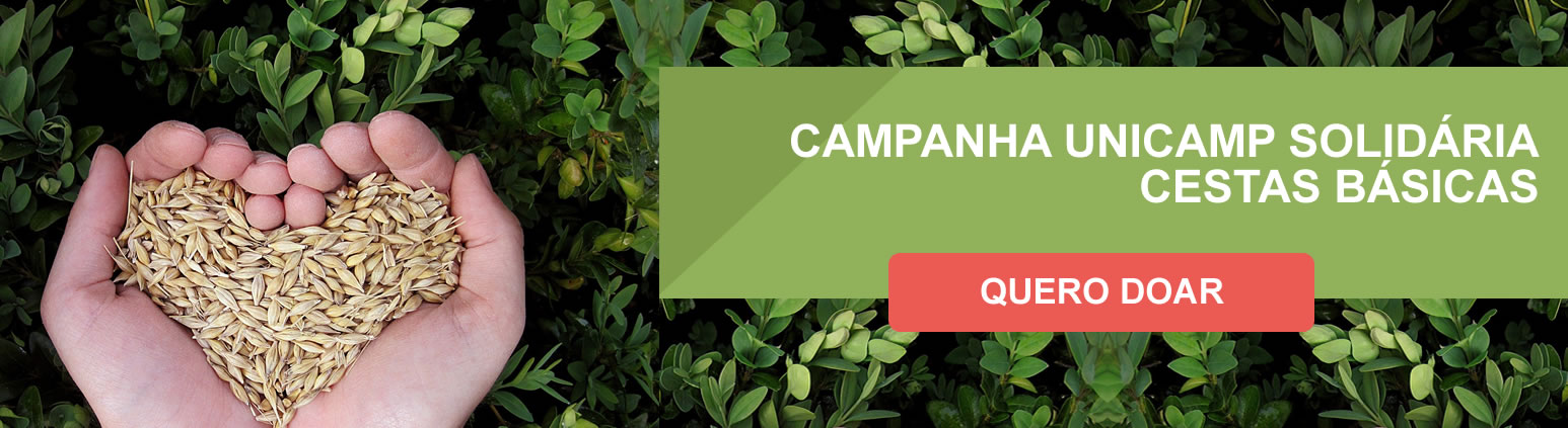 campanha2020.jpg